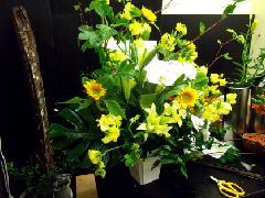 al003 春の黄色アレンジメント