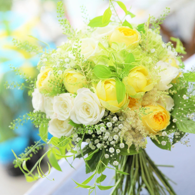 white&yellow&green