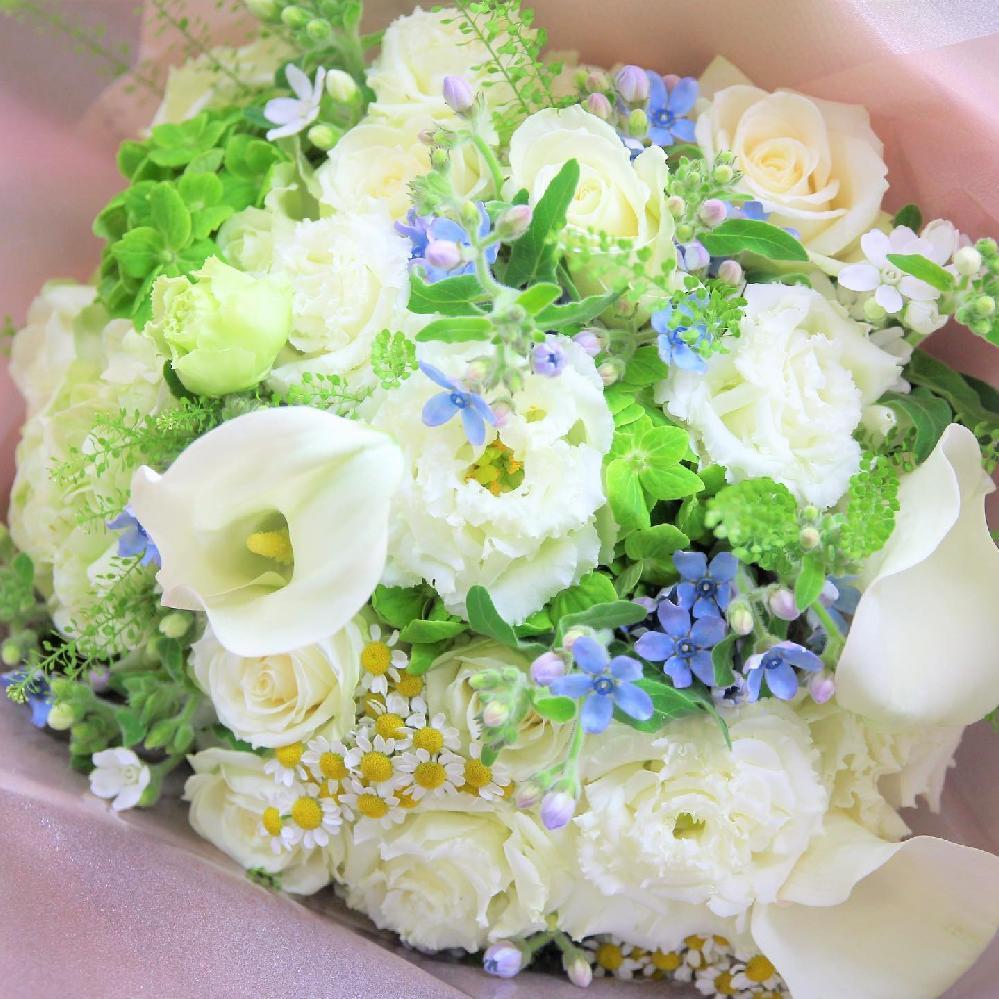 white&blue&green