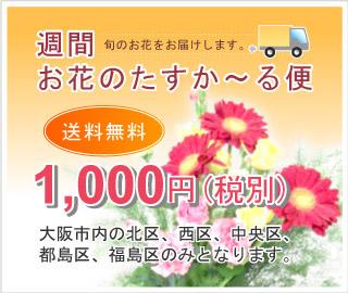 週間お花のたすか〜る