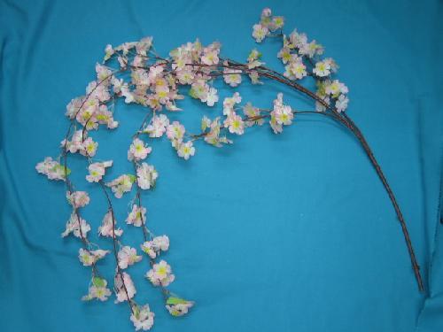 桜(しだれ桜枝)