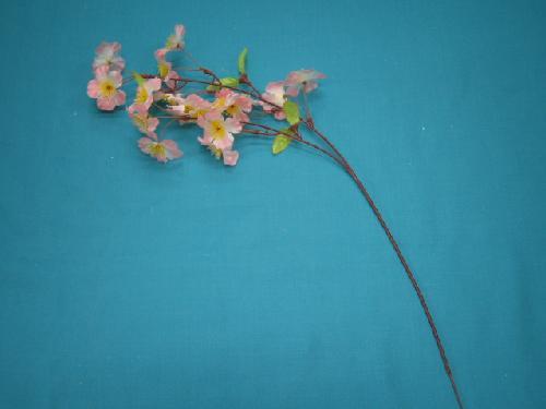 桜(小枝)