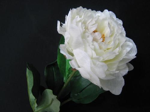造花(椿・白)12本