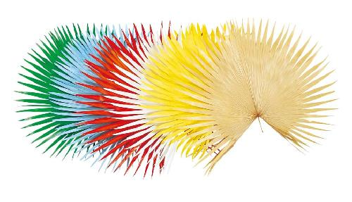 海飾り(ビローヤシ(小・75cm・天然素材)DO54101