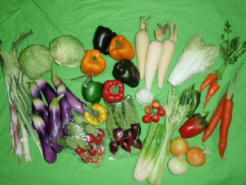 在庫処分食品サンプル(野菜セット)18種50個セット