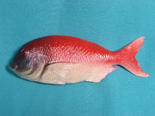 魚ディスプレイ(タイ小・22�p・ポリエチレン製)