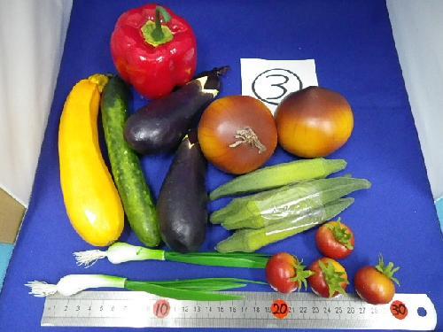在庫処分特価(野菜サンプルセット) �B
