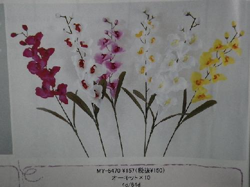 オーキット×10(花径6cm・単色48本入り)MY5470