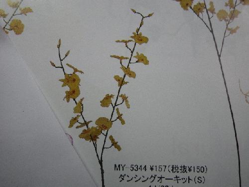 ダンシングオーキットS(花径3.5cm・48本入り)MY5344