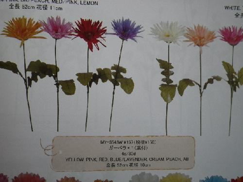 ガーベラ(花径大10cm・単色48本入り)MY5543W