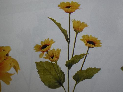 ヒマワリ×5(花径6cm・48本入り)MY5496W