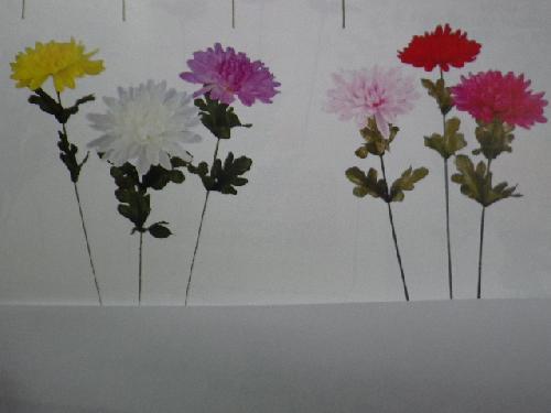 菊×1(花径9cm・単色36本入り)YK4008