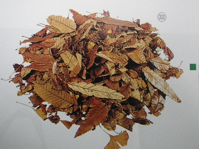 自然落ち葉(雑木ミックス100g入り)DO50810