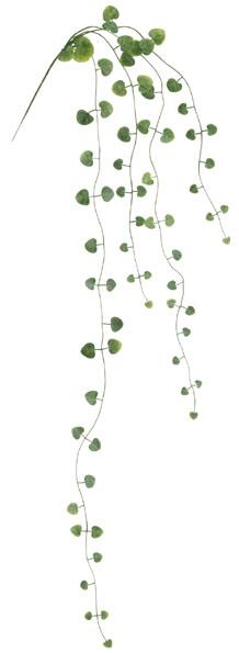ハートカズラバイン×4(グリーン全長73cm・プラ製)LEV9011