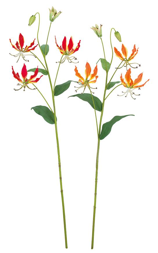 グロリオサ(レッド花径9cm全長82cm)FLS5282