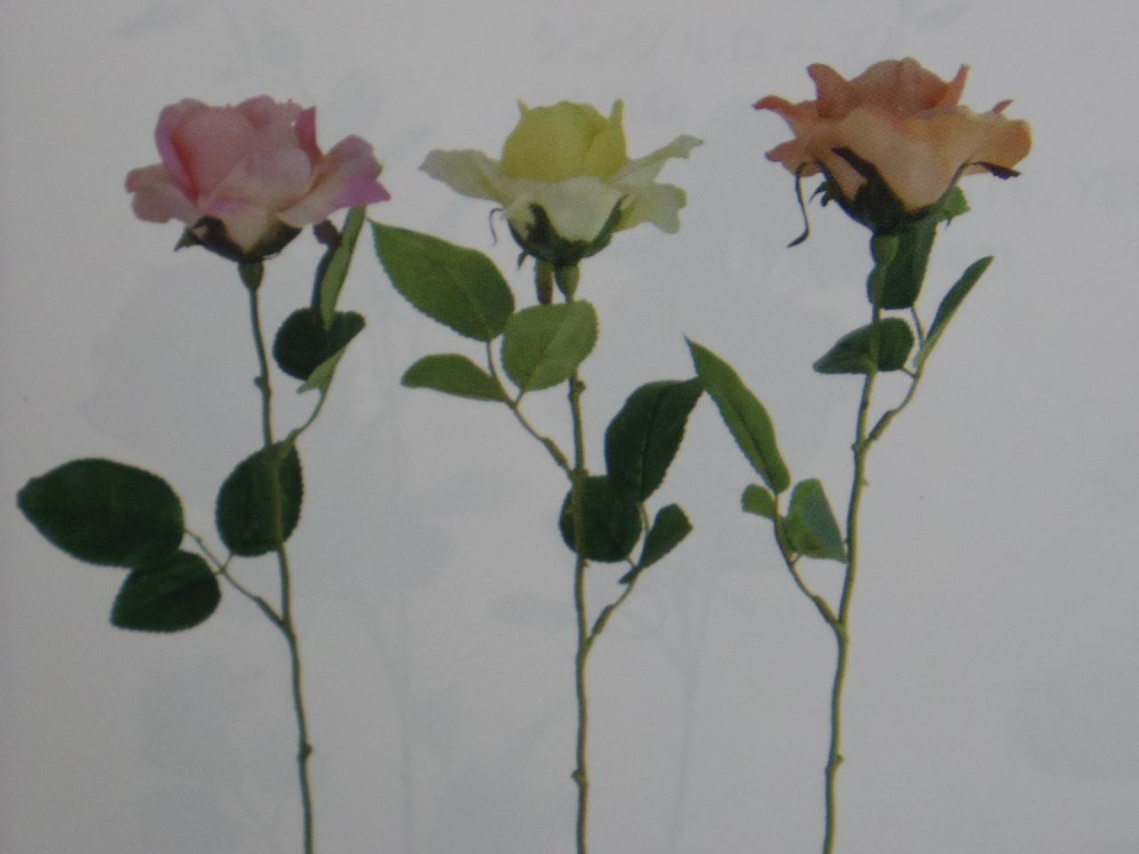 ソフィアローズ×1(花径10cm全長61cm・単色36本入り)MYA5356K