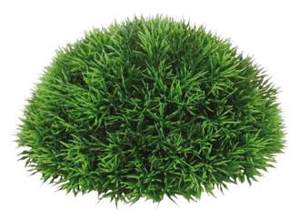 ハーフボール20cm(グリーングラス)LEE7020M