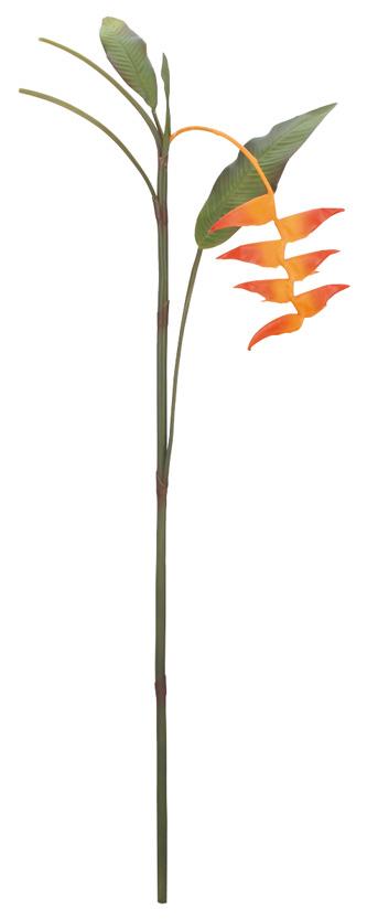 ヘリコニア(花径15.5cm全長118cm)FLS5254L