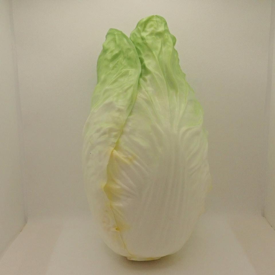 食品ディスプレイ(白菜・ハクサイ21cm)発泡ポリエチレン製DIFV7288