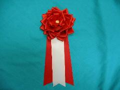 胸につける花リボンバラ・記章・徽章(特大・花径14cm)赤/選挙・講演会等で胸につける花