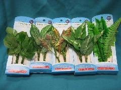 ウオーターグリーン5種セット