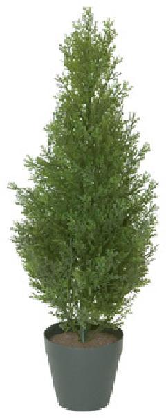 60cmコニファーツリー(グリーン)「コンビニ後払い」LET2014