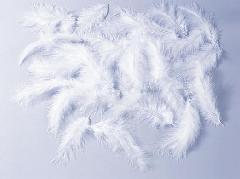 ホワイトフェザーパック(約10g・約120枚)DE0613