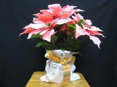 デパート仕様造花ポインセチア鉢植え(ピンク)