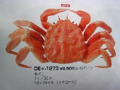 食品ディスプレイ(毛ガニ)[コンビニ後払い場合有り]