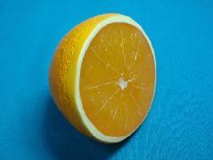 食品サンプルカット(オレンジハーフ)DIFV7955
