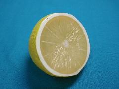 食品サンプルカット(レモンハーフ)DIFV7953