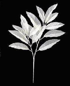 ブライダル用造花(シースルーマグノリアスプレー・クリーム・全長70cm)FLS650