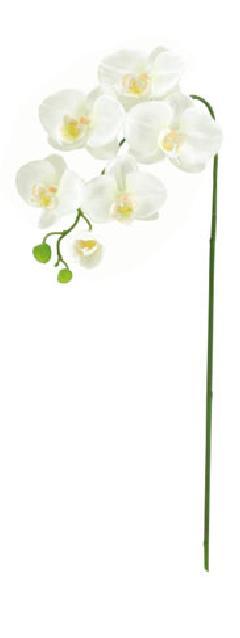 ブライダル用造花(胡蝶蘭S×6・ホワイト・花径4〜10cm)FLS5183s