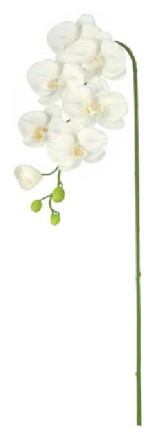 ブライダル用造花(胡蝶蘭M×7・ホワイト・花径4〜10cm)FLS5183M