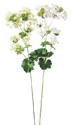 ブライダル用造花(ブプレリュウム×73・ホワイト・花径2cm)FLS726