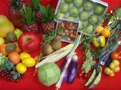 在庫処分大特価(野菜果物セットH・50個入り