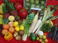 在庫処分大特価(野菜果物セットJ・50個入り