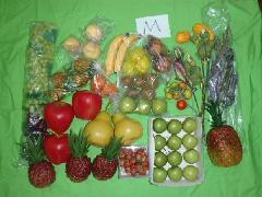 在庫処分大特価(野菜果物枝物サンプルセットM・50個入り )