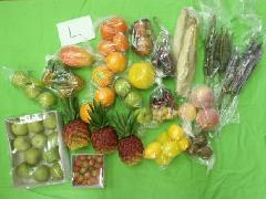在庫処分大特価(野菜果物枝物サンプルセットL・50個入り )