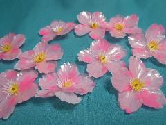 PET桜落輪(1枚約6cm・10輪入り)200147
