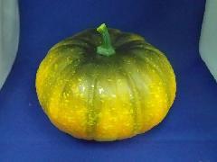 野菜サンプル(パンプキン・約19cmスチロール製)西36000
