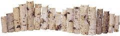 ランダム白樺フェンス全長やく120cm(h15〜30)ND395