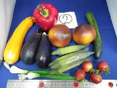 在庫処分特価(野菜サンプルセット) �A