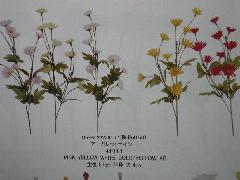 マーガレットデイジー(花径大4cm・単色48本入り)MY5533W