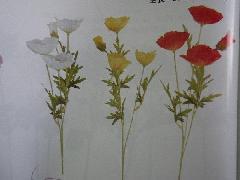 ニュークレープポピー(花径大6cm・単色36本入り)MY5490W