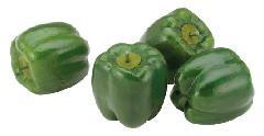 野菜ディスプレイ(80mmパプリカグリーン4ヶ入り・スチロール製)VF1140