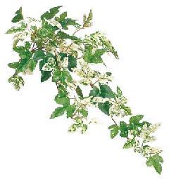 ブライダル用造花(ミニニューアイビーパインS・全長44cm・グリーンホワイト)LEV113S