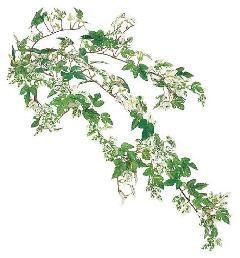 ブライダル用造花(ミニニューアイビーパインL・全長68cm・グリーンホワイト)LEV113L