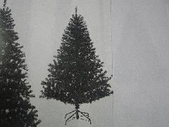 卸販売クリスマスノーブルパインワイドツリー(150cm・ブラック)PATR6983