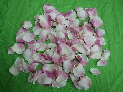 造花のフラワーシャワー・バラの花びら(フクシア/クリーム)[コンビニ後払いの場合有り]